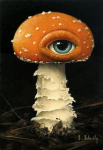 Amanita muscaria painting from Scott Scheidly: